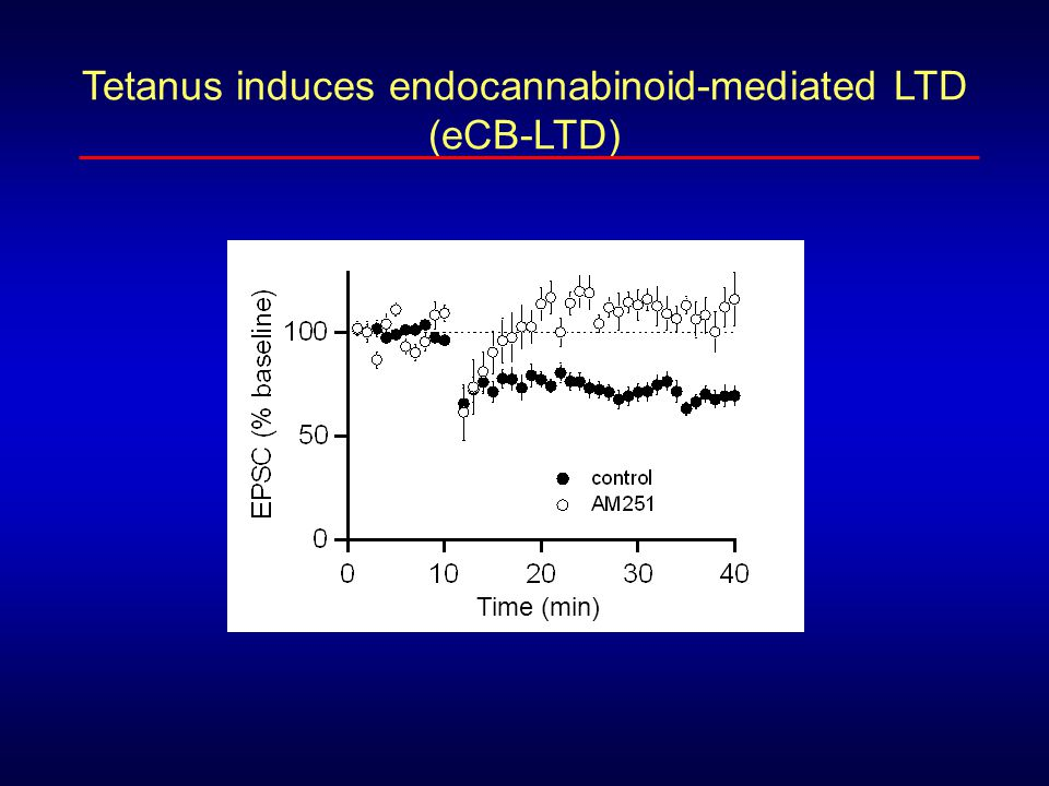 Tetanus induces endocannabinoid-mediated LTD
