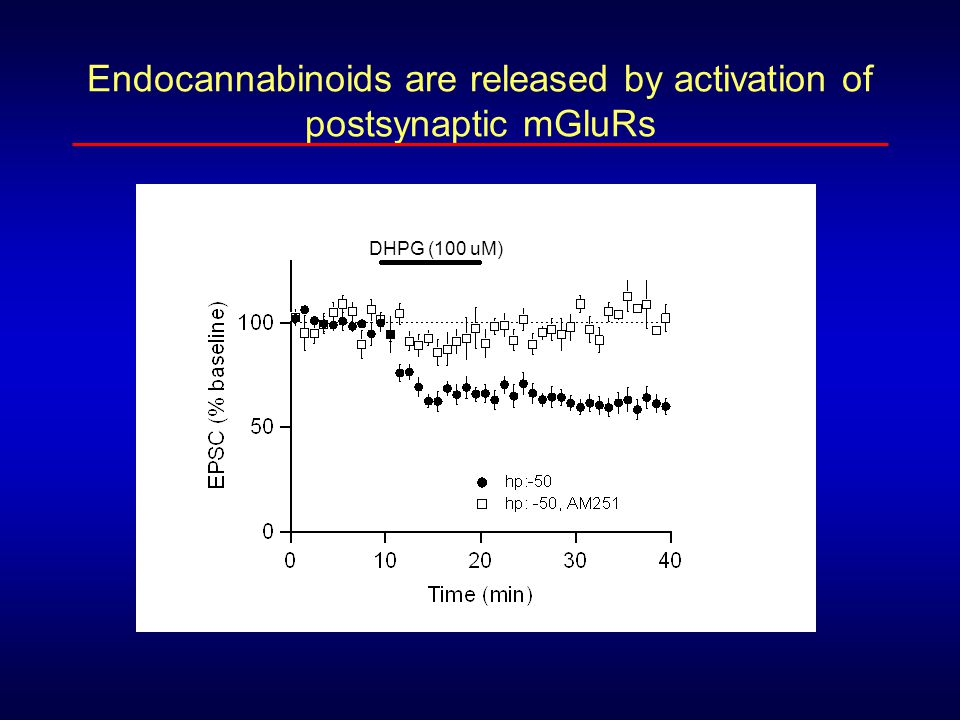 Endocannabinoids are released by activation of postsynaptic mGluRs