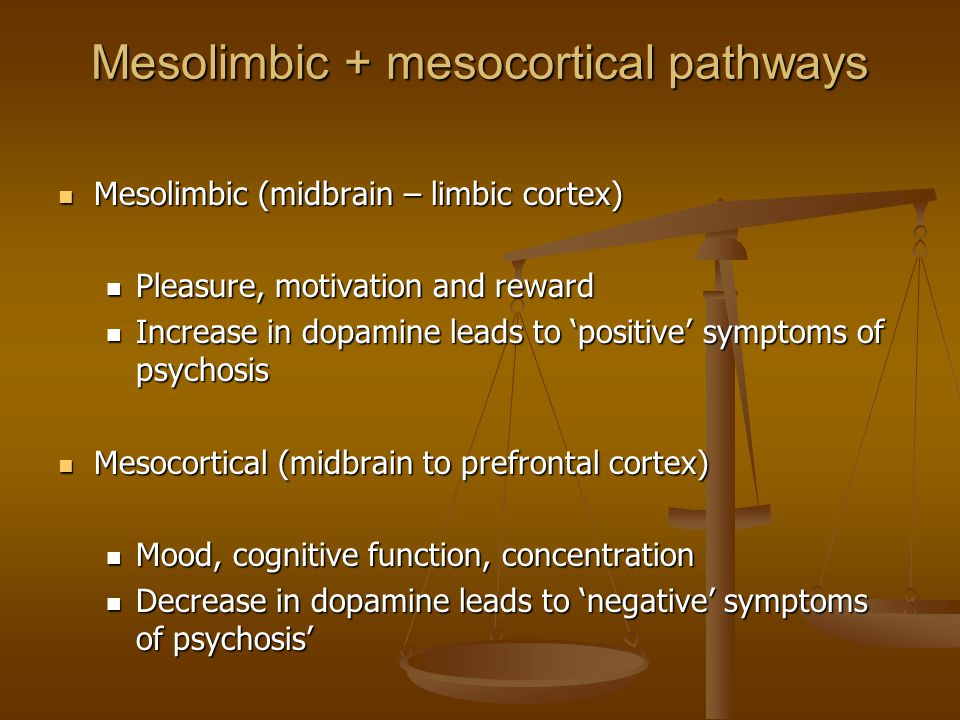 Mesolimbic + mesocortical pathways