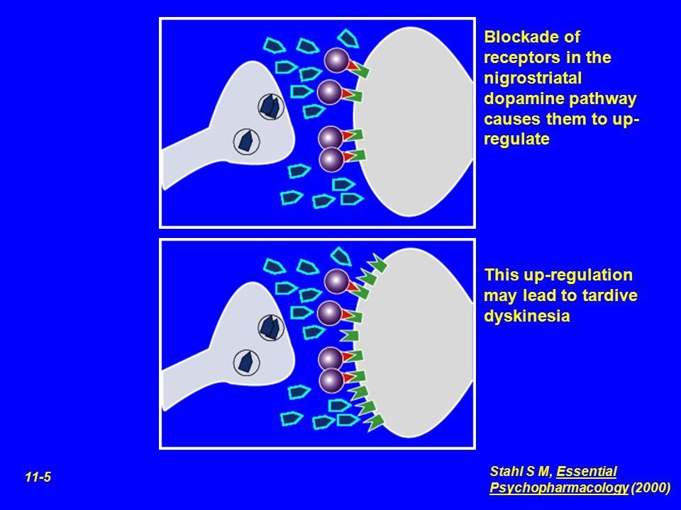 This up-regulation may lead to tardive dyskinesia