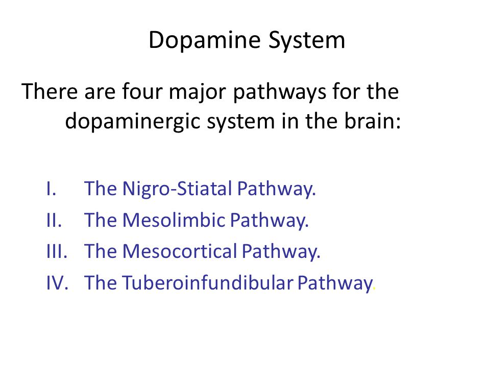 Dopamine System There are four major pathways for the dopaminergic system in the brain: The Nigro-Stiatal Pathway.
