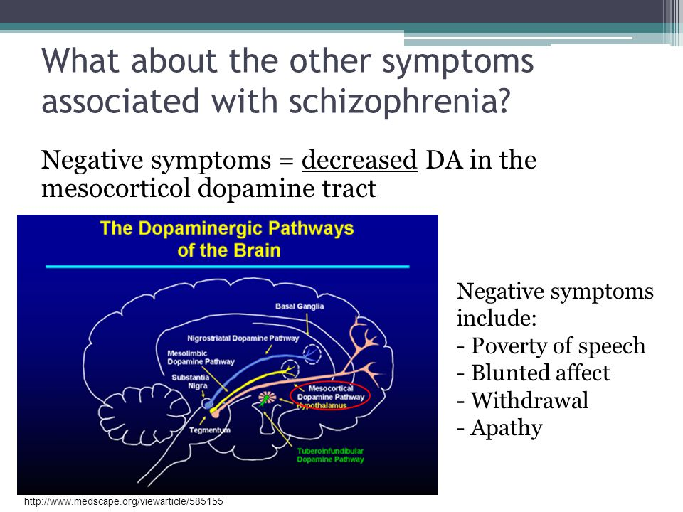 What about the other symptoms associated with schizophrenia
