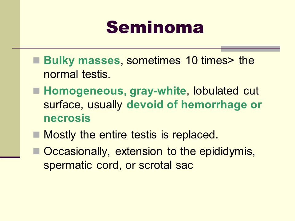 Seminoma Bulky masses, sometimes 10 times> the normal testis.