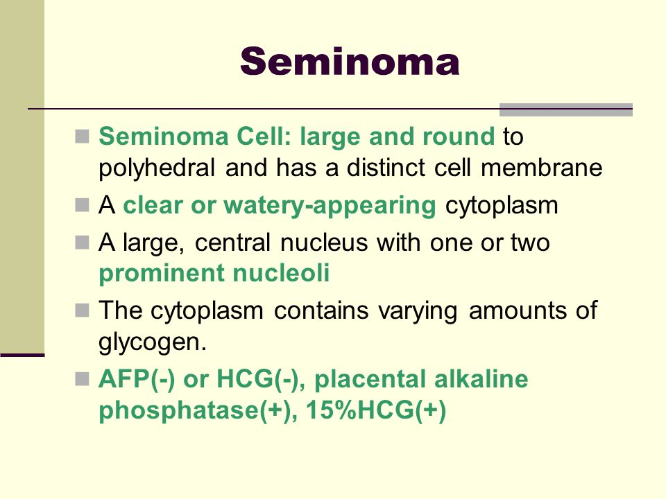 Seminoma Seminoma Cell: large and round to polyhedral and has a distinct cell membrane. A clear or watery-appearing cytoplasm.