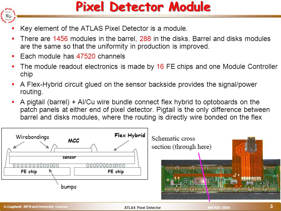 Pixel Detector Module Key element of the ATLAS Pixel Detector is a module.