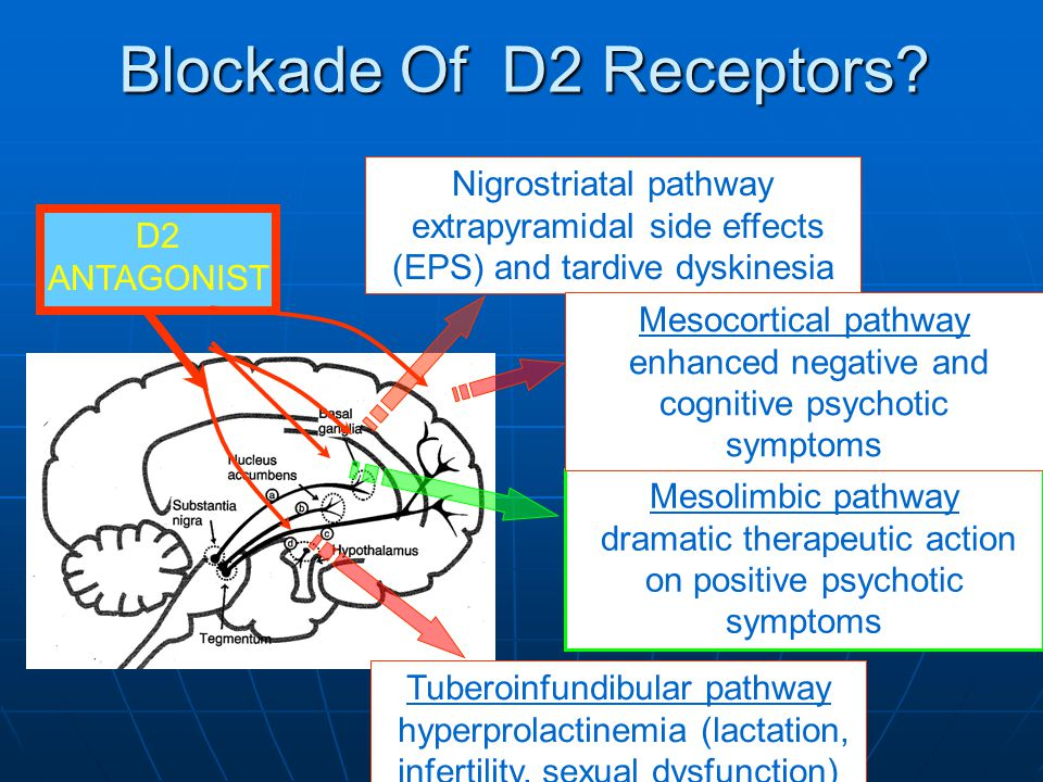 Blockade Of D2 Receptors