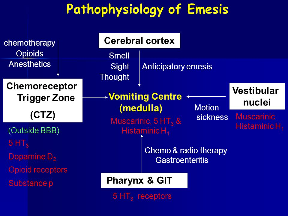 Pathophysiology of Emesis