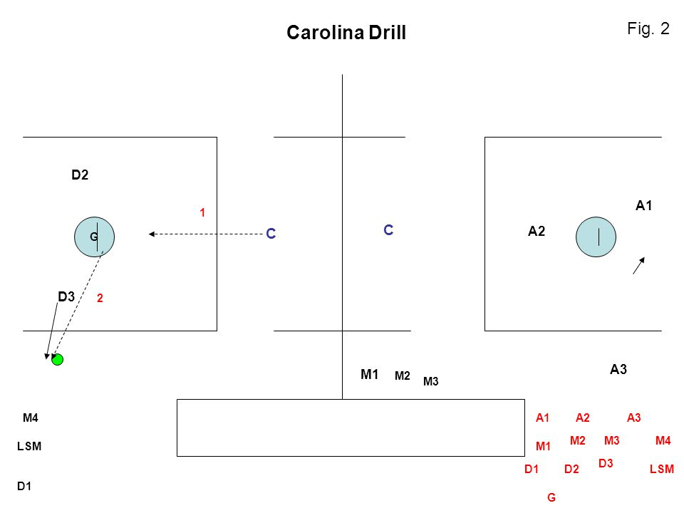 Carolina Drill Fig. 2 C C D2 A1 A2 D3 A3 M1 1 G 2 M2 M3 M4 A1 A2 A3 M2