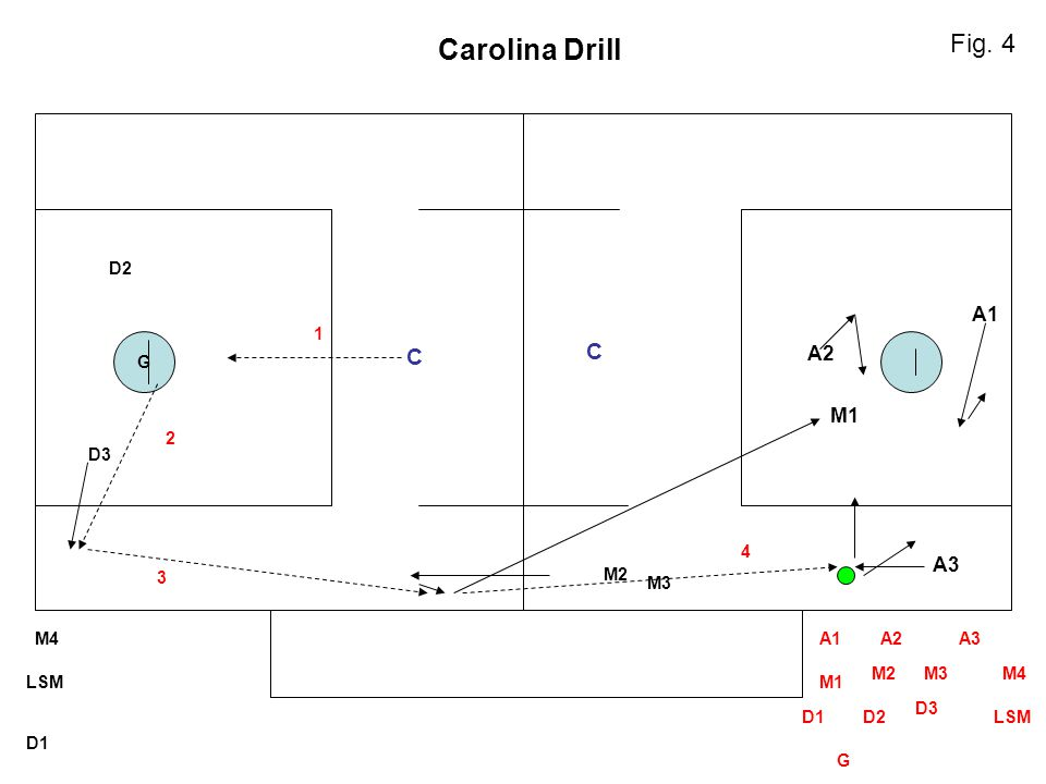 Carolina Drill Fig. 4 C C A1 A2 M1 A3 D2 1 G 2 D3 4 3 M2 M3 M4 A1 A2