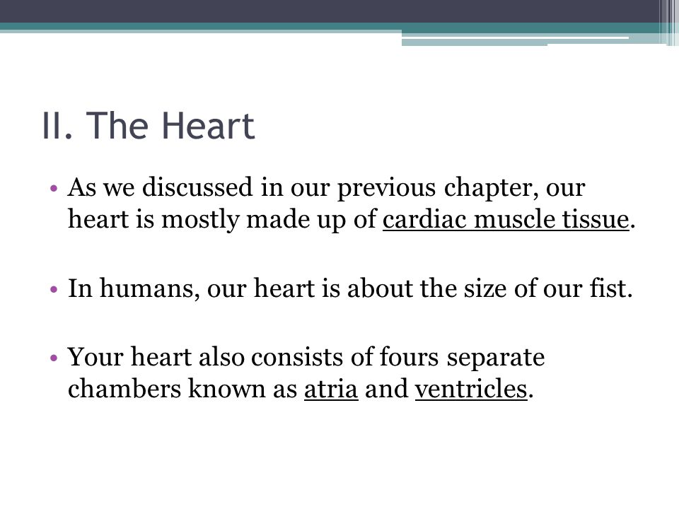 II. The Heart As we discussed in our previous chapter, our heart is mostly made up of cardiac muscle tissue.