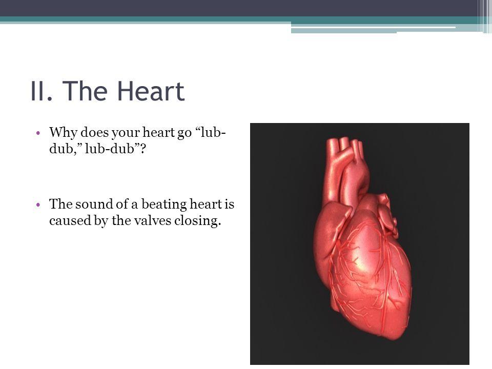 II. The Heart Why does your heart go lub- dub, lub-dub