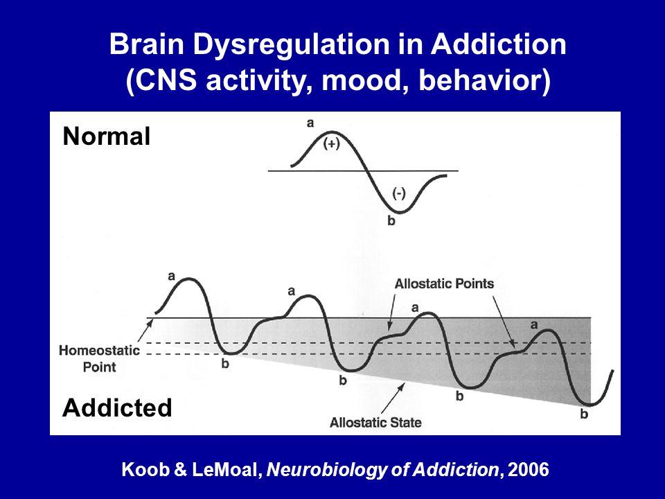 Brain Dysregulation in Addiction (CNS activity, mood, behavior)