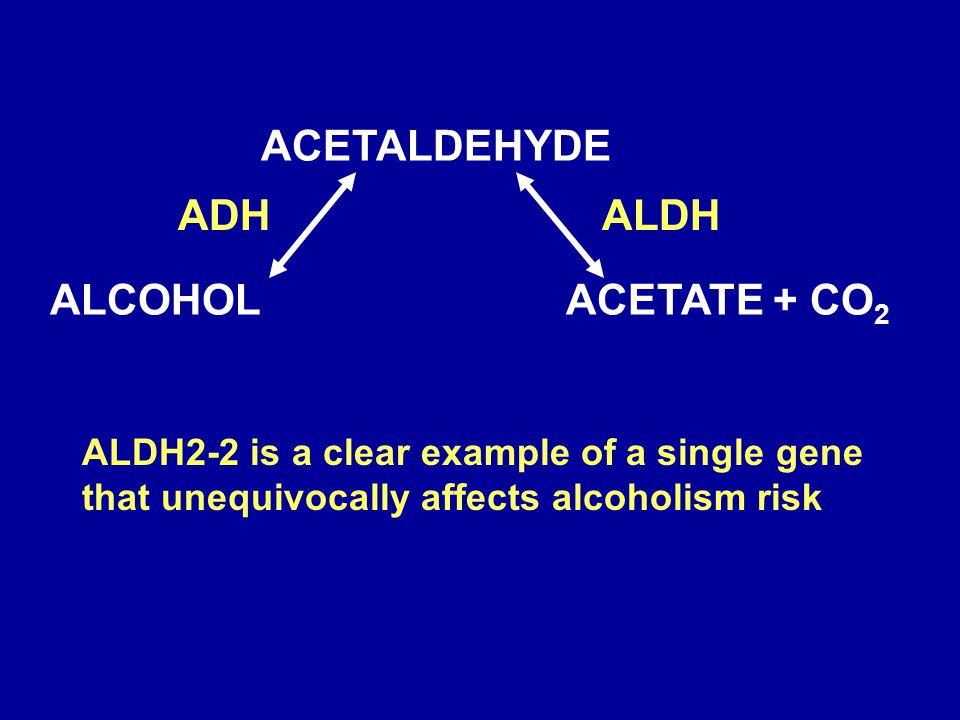 ACETALDEHYDE ALCOHOL ACETATE + CO2 ADH ALDH