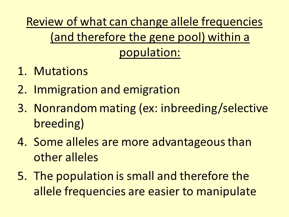 Review of what can change allele frequencies (and therefore the gene pool) within a population: