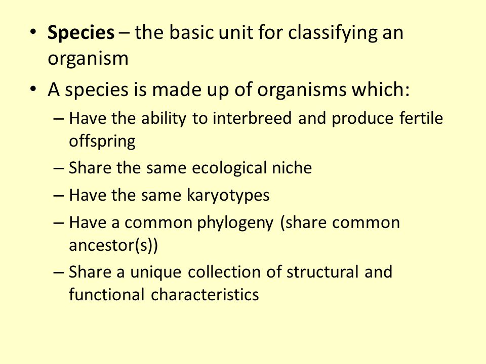 Species – the basic unit for classifying an organism