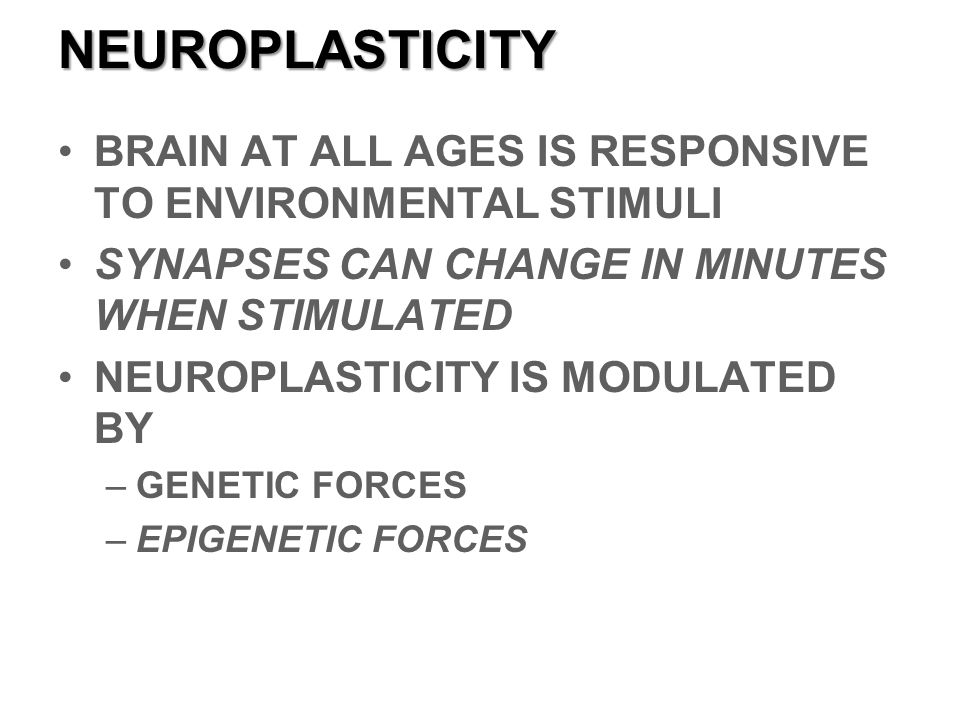 NEUROPLASTICITY BRAIN AT ALL AGES IS RESPONSIVE TO ENVIRONMENTAL STIMULI. SYNAPSES CAN CHANGE IN MINUTES WHEN STIMULATED.