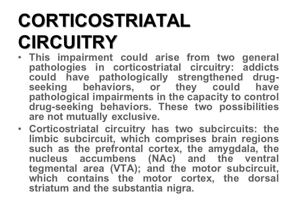 CORTICOSTRIATAL CIRCUITRY