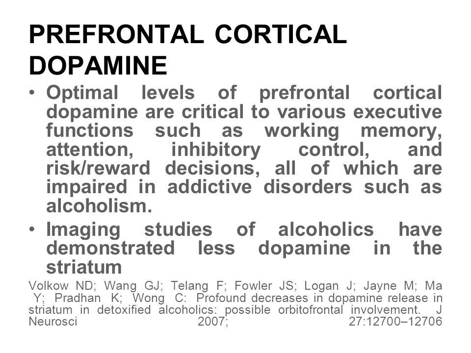 PREFRONTAL CORTICAL DOPAMINE