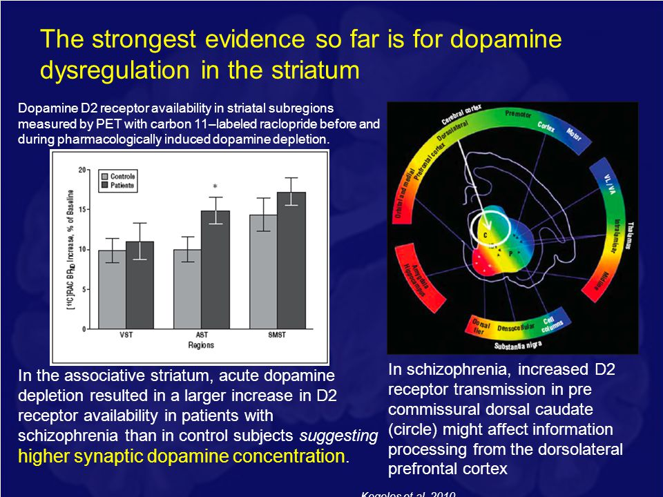 The strongest evidence so far is for dopamine dysregulation in the striatum