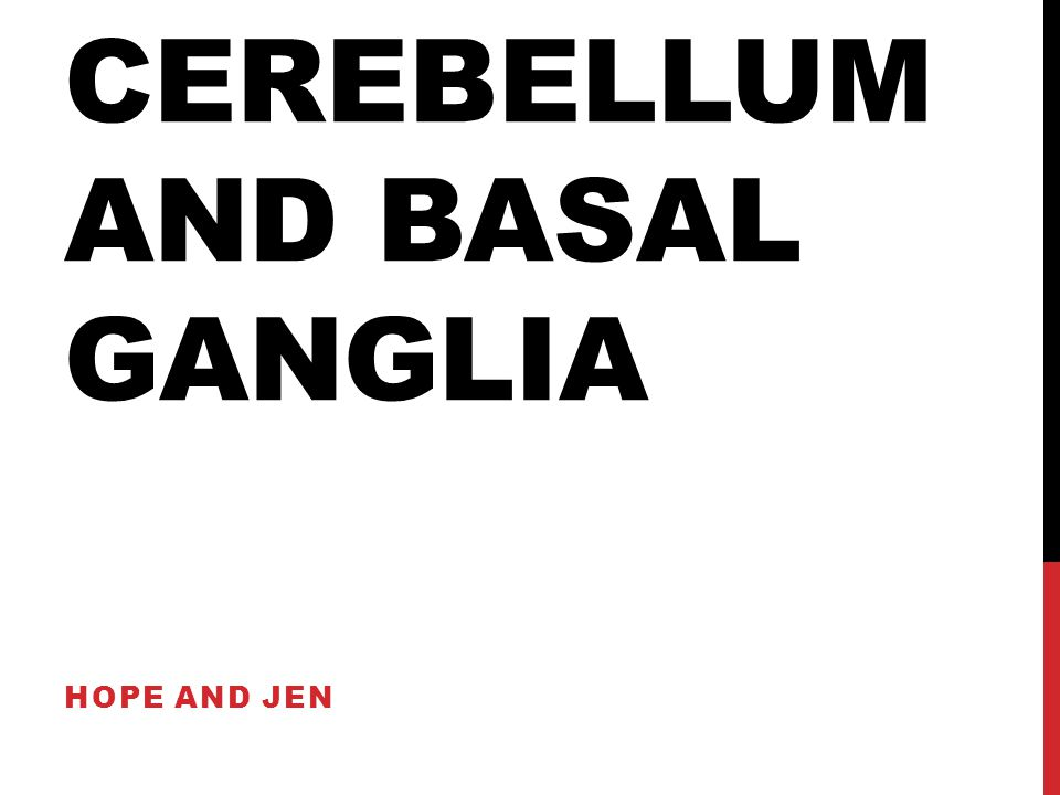 CEREBELLUM AND BASAL GANGLIA