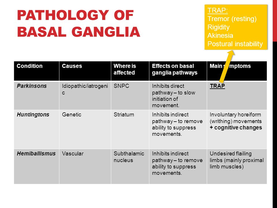 Pathology of Basal Ganglia