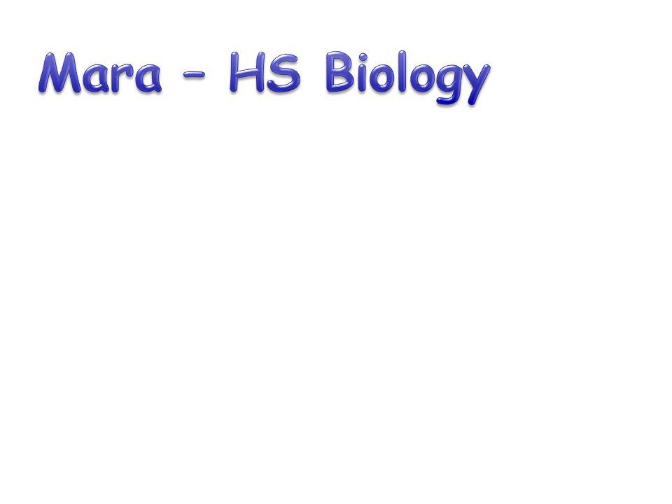Mara – HS Biology