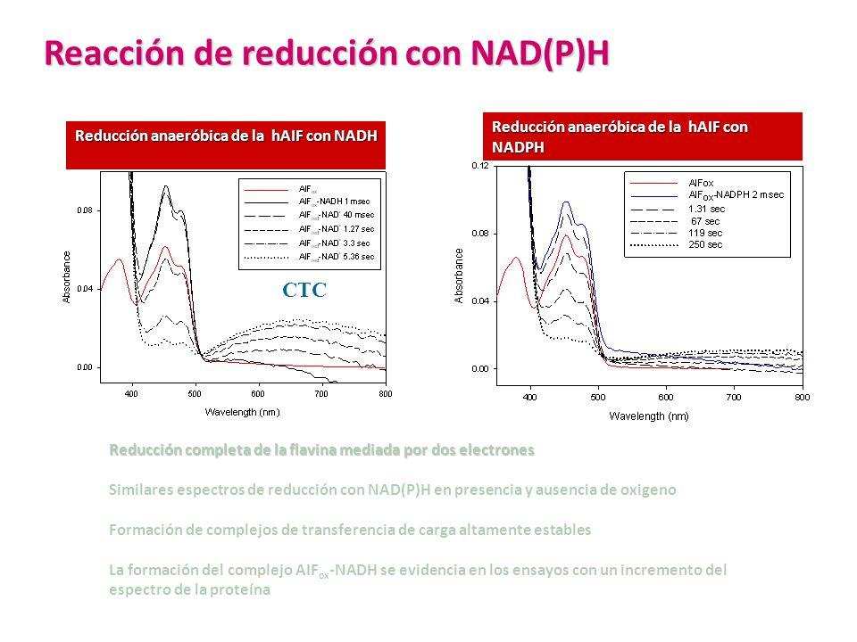 Reacción de reducción con NAD(P)H