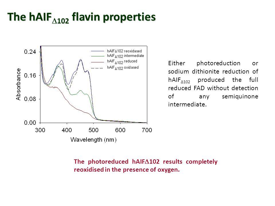 The hAIF102 flavin properties