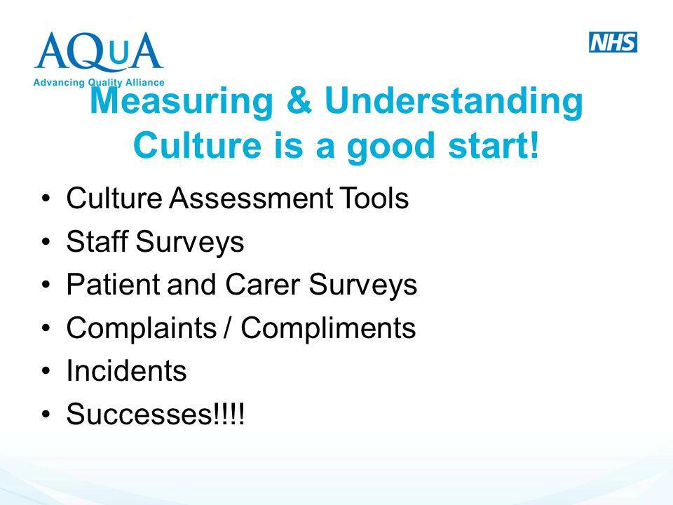 Measuring & Understanding Culture is a good start!