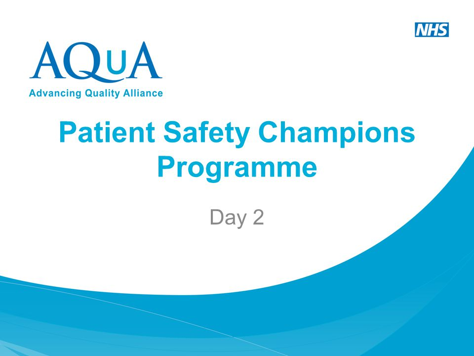 Patient Safety Champions Programme