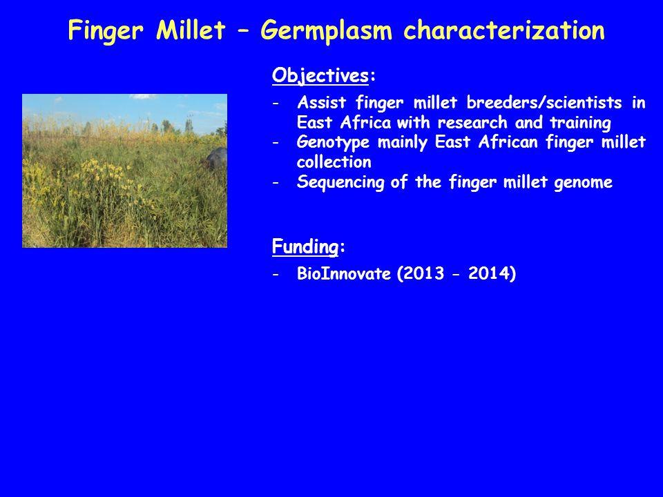 Finger Millet – Germplasm characterization