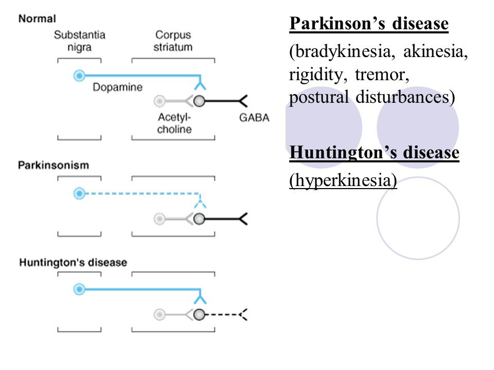 Parkinson's disease (bradykinesia, akinesia, rigidity, tremor, postural disturbances) Huntington's disease.