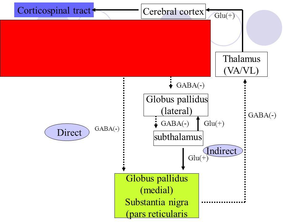 Corticospinal tract Cerebral cortex Striatum (pars compacta) Dopamine