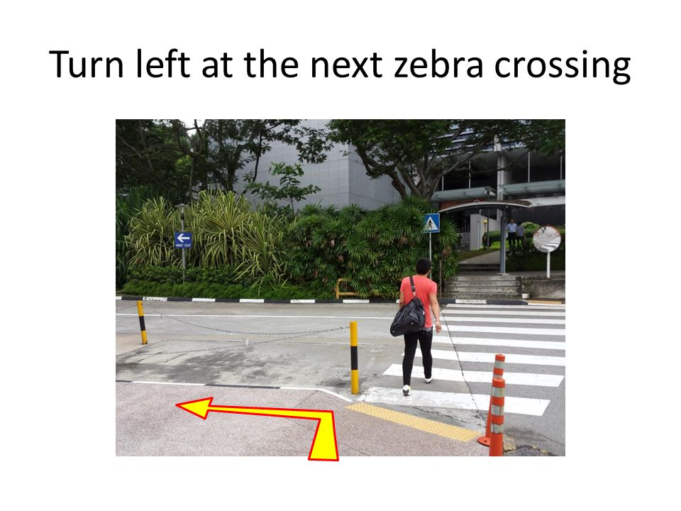 Turn left at the next zebra crossing