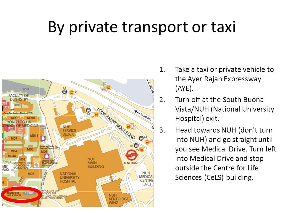 By private transport or taxi