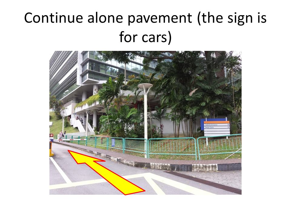 Continue alone pavement (the sign is for cars)