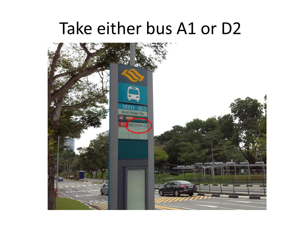 Take either bus A1 or D2
