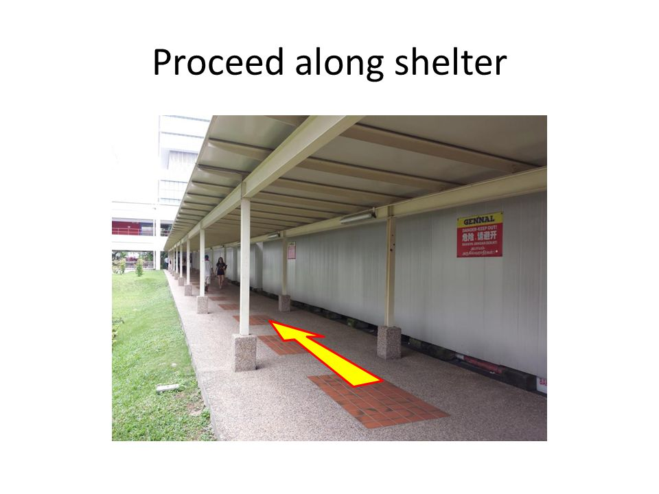 Proceed along shelter