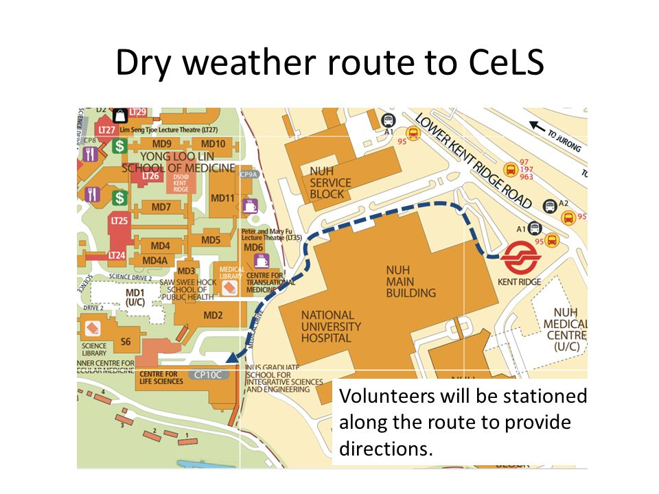 Dry weather route to CeLS