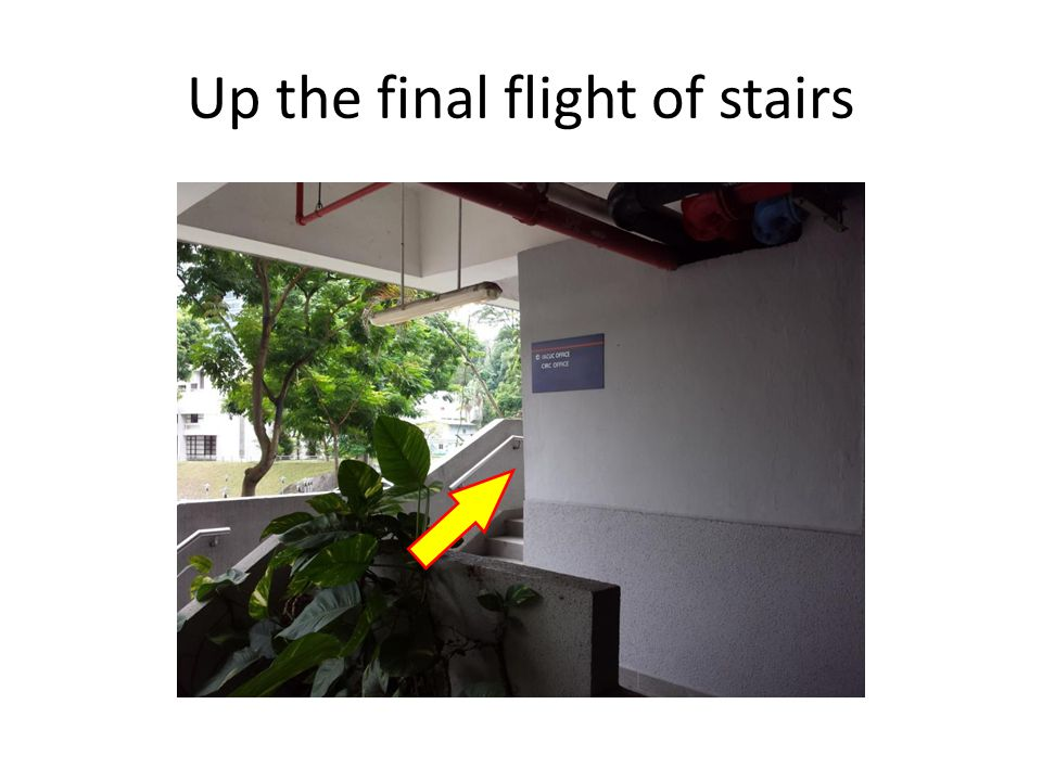 Up the final flight of stairs