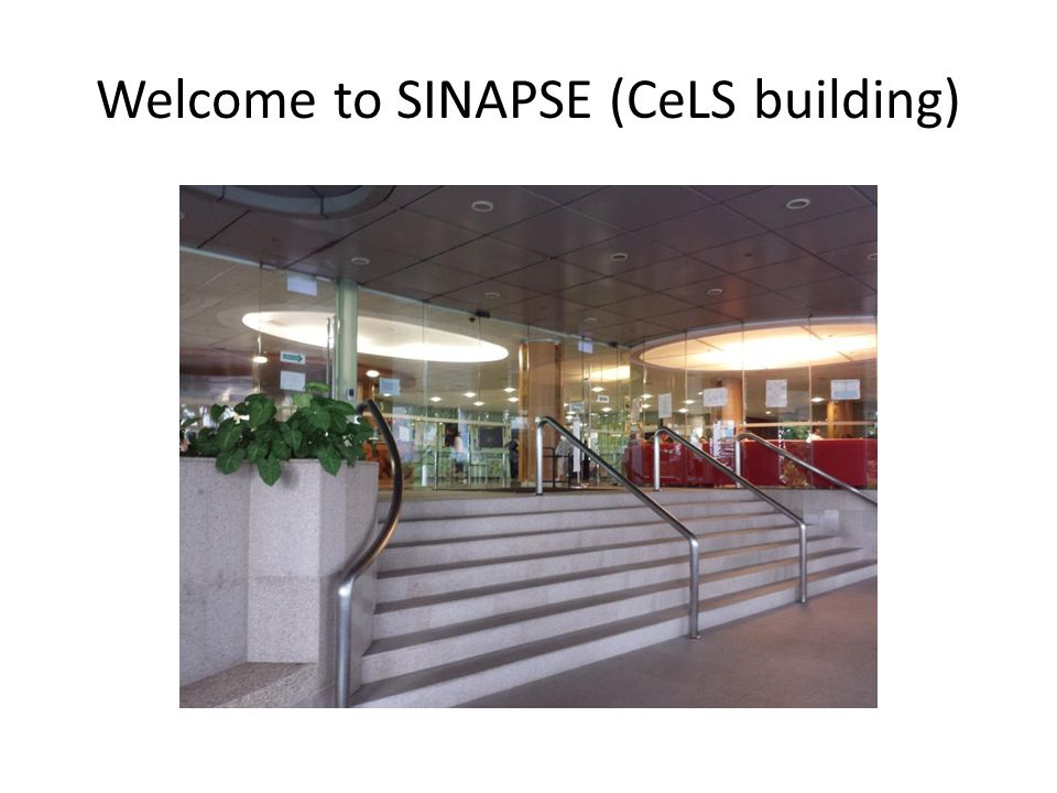 Welcome to SINAPSE (CeLS building)
