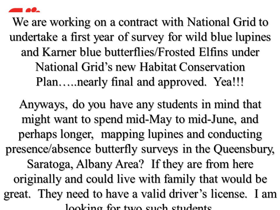We are working on a contract with National Grid to undertake a first year of survey for wild blue lupines and Karner blue butterflies/Frosted Elfins under National Grid's new Habitat Conservation Plan…..nearly final and approved. Yea!!!