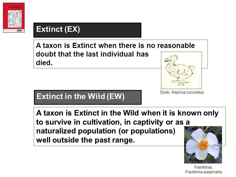 Extinct in the Wild (EW)