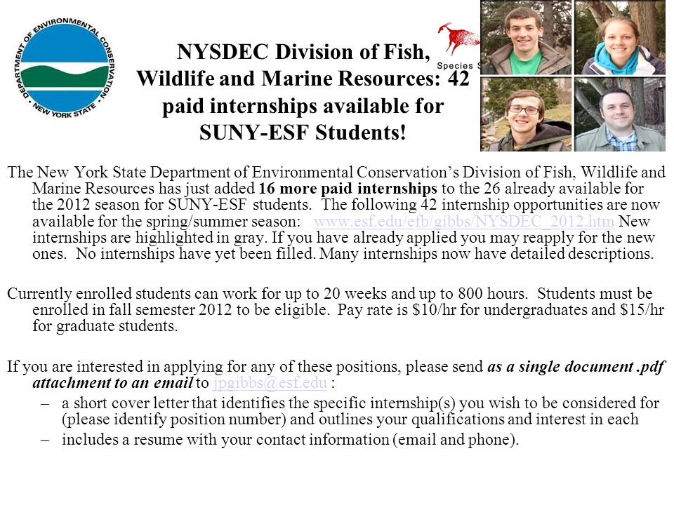 NYSDEC Division of Fish, Wildlife and Marine Resources: 42 paid internships available for SUNY-ESF Students!