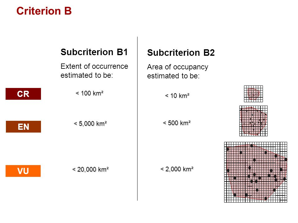 Criterion B Subcriterion B1 Subcriterion B2 CR EN VU