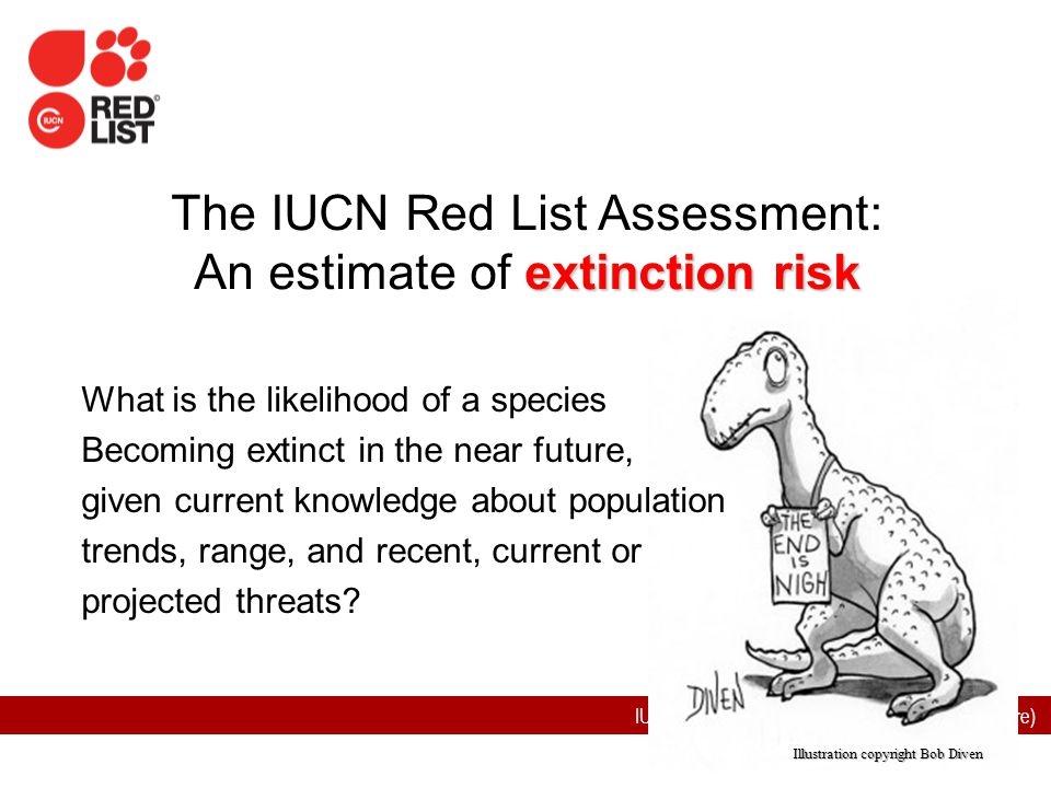 The IUCN Red List Assessment: An estimate of extinction risk