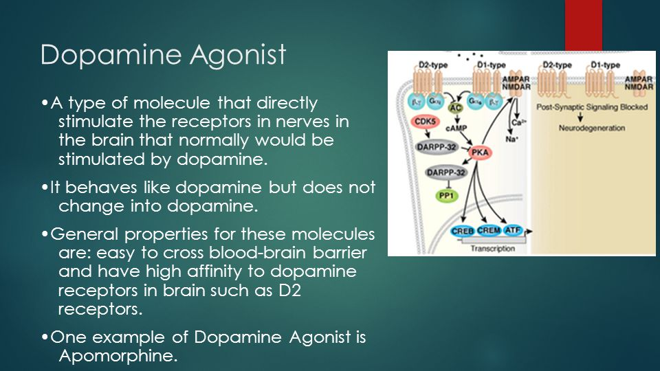 Dopamine Agonist •Less effective than Levodopa, but can help in reduce symptoms relate to motor function.