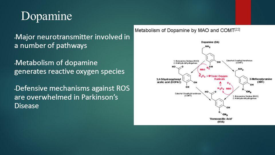 Damage to Dopamine Cells