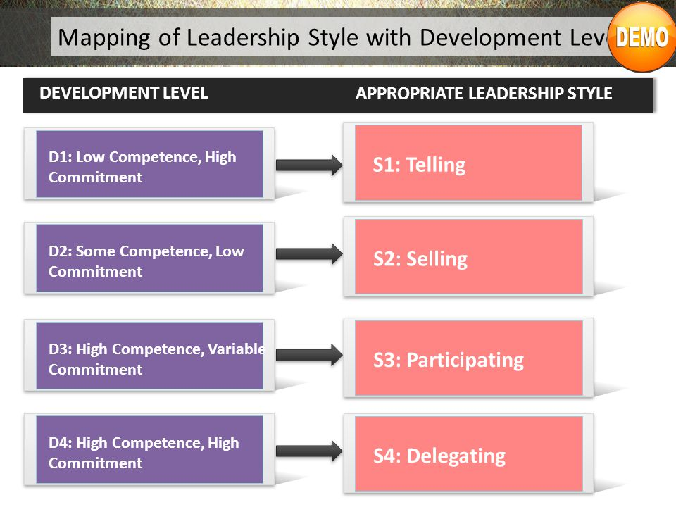 Mapping of Leadership Style with Development Level