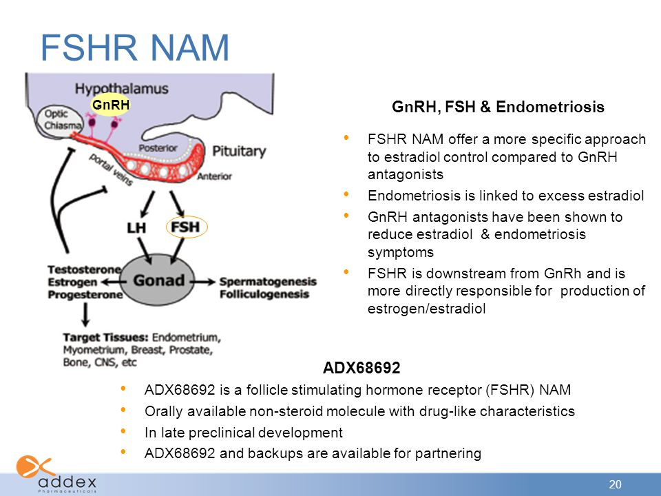 GnRH, FSH & Endometriosis